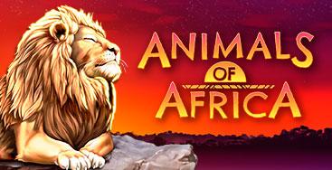 Juega a Animals of Africa en nuestro Casino Online